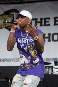 12th Annual Brooklyn Hip Hop Festival Finale Concert