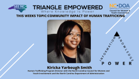 Triangle Empowered Virtual Series